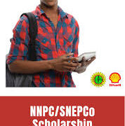 NNPC/SNEPCO Scholarship Past question and Answers
